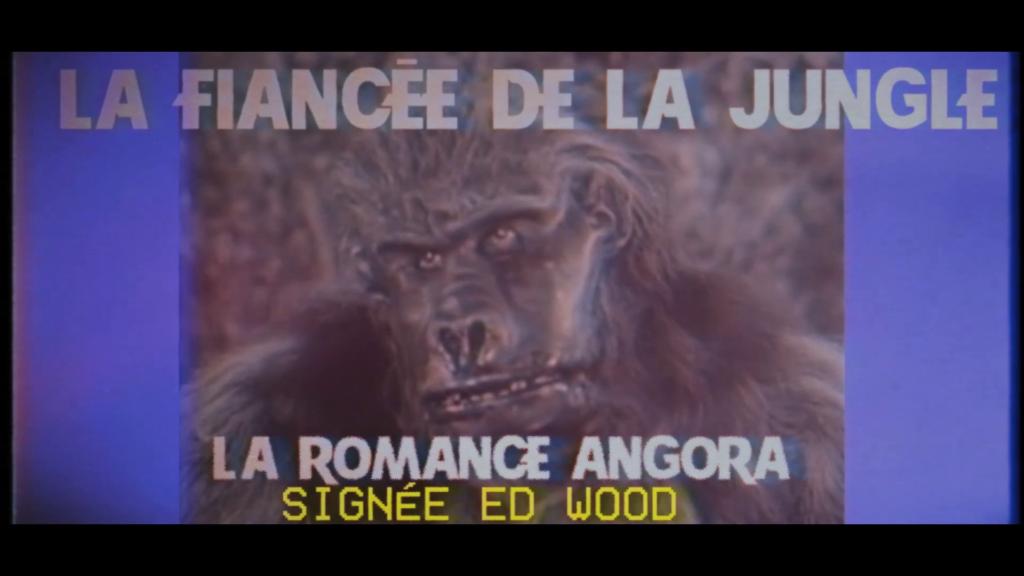 Pire provocation d'Ed Wood, starifié par Tim Burton : pousser une femme dans les bras d'un gorille.