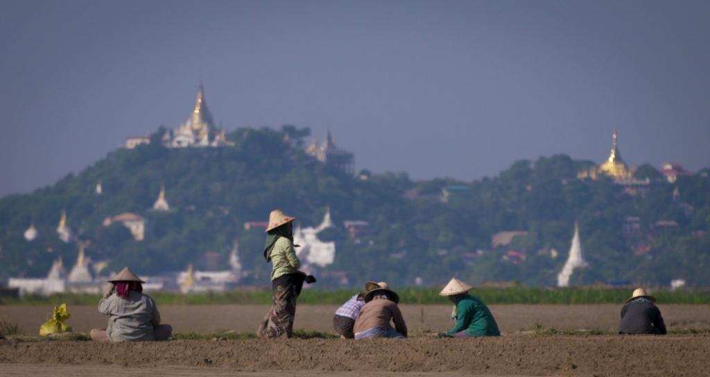 En Birmanie, le bouddhisme est la religion nationale, selon la constitution.