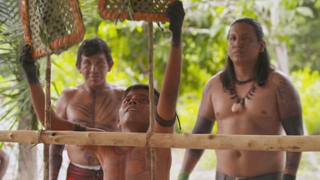 Amazonie : devenir un homme