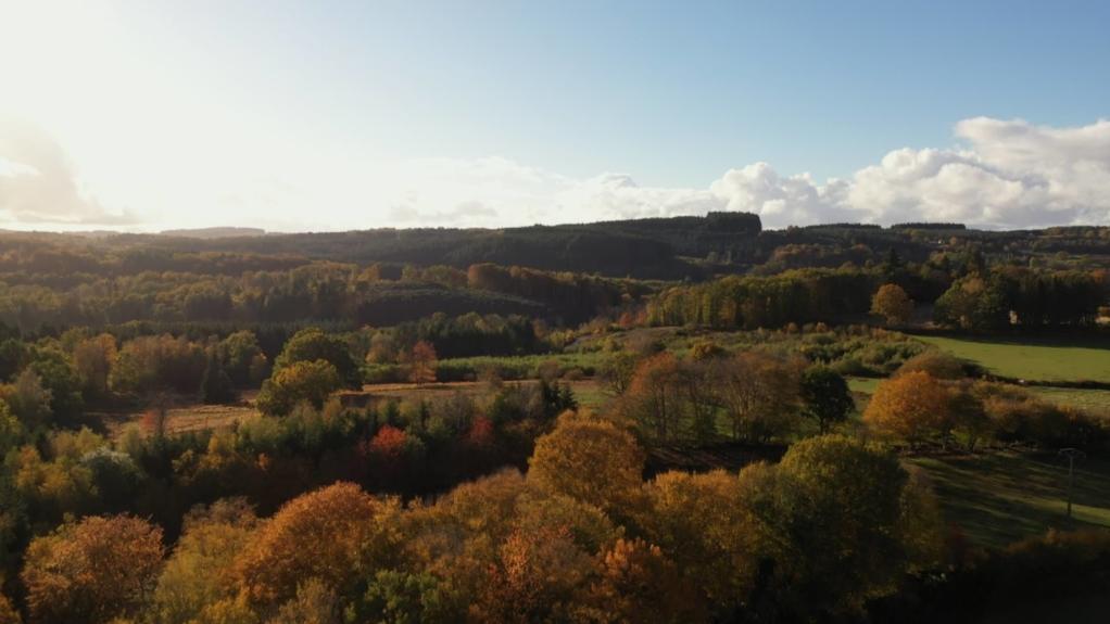 La Bourgogne, terre d'histoire