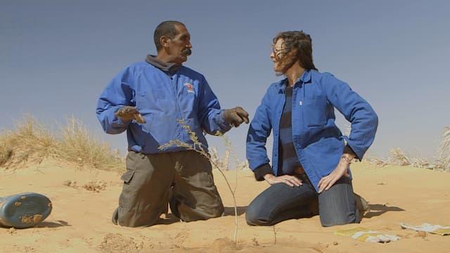 Drôle de ville pour une rencontre… en Mauritanie