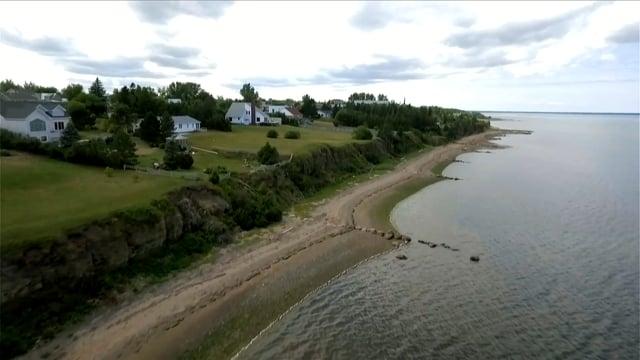 Le Grand Tintamarre des Acadiens