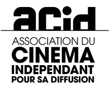 Logo Acid